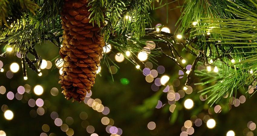 Ferienwohnung am See Weihnachtszeit